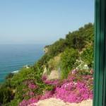 Вид из окна монастырского дома.